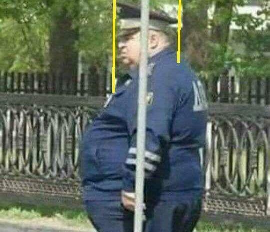 Il corpo umano spesso ingrassa per mantenere il peso della testa in Equilibrio Meccanico Abituale. Lo sapevate?